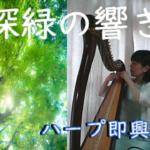新緑の響き♪即興