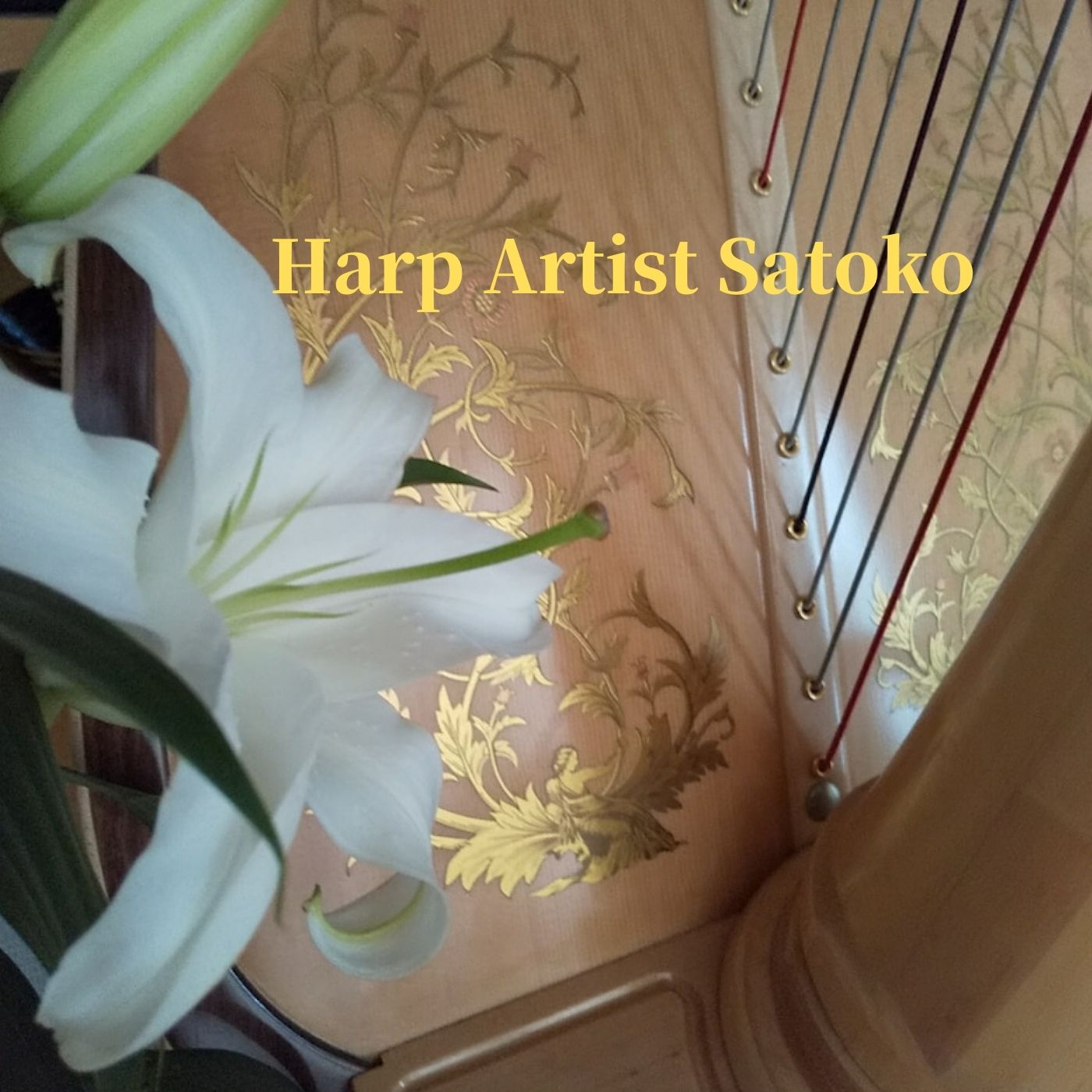 Harp Artist Satoko CDの原本